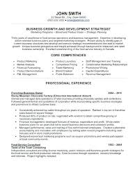 Lead Business Analyst Resume 8 Download X Systems