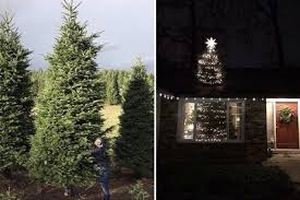 This Couple Found The Perfect Solution For Their 20 Foot Christmas Tree