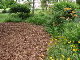All About Garden Mulch…
