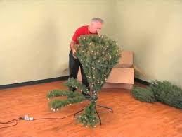 Polytree Christmas Trees Instructions by Christmas Tree Assembly Youtube