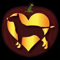 Boston Terrier Pumpkin Pattern by American Bull Terrier Pumpkin Carving Patterns Patterns Kid