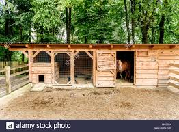 Mini ZOO With Home Stables, Barn Horses And Chicken. Miniature ... Interiors Awesome Barn Door Hdware Home Depot Mini Barns For Miniature Horses Small Horse Horizon Structures Storage Sheds Charlotte Nc Bnyard Amish Raiser Tiny House Cool Kits Design Ideas Kitchen Endearing About Rustic Homes Builders Customer Reviews Board Millers Hip Roof Cedar Craft Solutions Sullivan County Ulster Real Estate Catskill Farms Mast Amishbuilt Backyard Shed Crazy Atticmag Barns Lofted Porch 10x20 All Pssure Treated 2 X 6 Roofing D R Siding Restoration