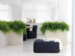 raumteiler pflanzkübel in creme aus polystone modern