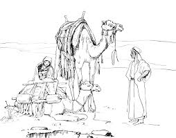 Desert Animals Camels Coloring Pages