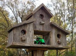Best 25 Rustic Birdhouses Ideas On Pinterest Birdhouse Plans