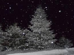 Christmas Tree Shop Williston Vt by Joe U0027s Pond West Danville Vermont December 2013