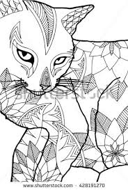 Coloring Book For Adults Cat