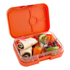 Drawing Yumbox Tapas Measurements