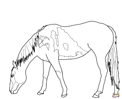 Adult Coloring Beautiful Mare And Foal Pages Colouring Grazzing Horse Filly Page Free Kids 1224