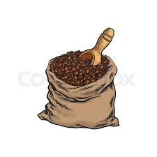 Cloth Bag Full Of Roasted Coffee Beans With A Wooden Shovel Sketch Style Vector Illustration On White Background Realistic Hand Drawing