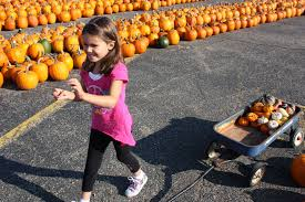 Best Halloween Attractions In Michigan by Fun To Frightening Halloween Haunts Attractions Offered Across