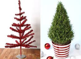 Potted Christmas Tree by Christmas Trees For Your Studio Apartment The Frisky