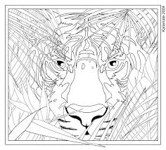 Coloring Pages Hard Adults Of Animals Tiger Face A