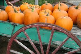 Circleville Pumpkin Festival by Why The Circleville Pumpkin Show Is One Of The Best Fall Events