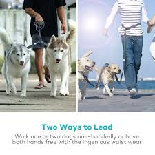 TaoTronics Double Leash With Coupler For Two Dogs - Dealmoon Red Birthday Card Personalised Socks Solesmith Small Business Spotlight Supercan Bully Sticks Eskieantics The Ultimate Pet Parent Guide Healthy Paws Insurance Girl And The Water Promo Code Vintage Pearl Coupon About Us Petcaresupplies Pharmacy Items On Sale 15 Off Free Birthdaycarforkids Photos Images Pics Lureshop Eu Discount Code Keywordsfindcom Voucher Codes Best For September 2019 Petlandia Book Review With Promotional By Turbotabby Illustrations Hashtags Deal To Earn Likes Instagram Tagsetscom