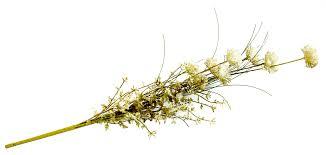 kunstblumen stängel 50 cm für vase rankgitter wohnzimmer deko für flur dekoblume groß künstlich