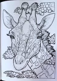 Amazon Creative Haven Wild Animal Portraits Coloring Book Adult