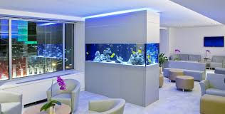 Aquarium Colorology: Entering Grey Territory With Neutral Colors ... Amazing Aquarium Designs For Your Comfortable Home Interior Plan 20 Design Ideas For House Goadesigncom Beautiful And Awesome Aquariums Cuisine Small See Here Styfisher Best Stands Something Other Than Wood Archive How To In Photo Good Depot Kitchen Cabinet Sale 12 To Home Aquarium Custom Bespoke Designer Fish Tanks Perfect Modern Living Room Lighting 69 On Great Remodeling Office 83 Design Simple Trending Colors X12 Tiles Bathroom 90