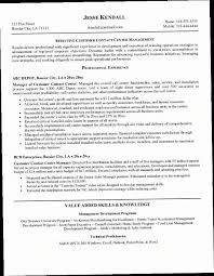 Call Center Agent Resume PXXY Template Sample