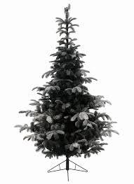 Nordmann Fir Christmas Tree Seedlings by 6ft Snowy Nordmann Fir Life Like Artificial Christmas Tree Hayes