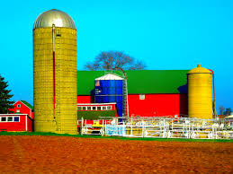 File:Barn With Three Silos - Panoramio.jpg - Wikimedia Commons Old Red Farm Barn With Concrete Silo Stock Photo Picture And Yellow With Canada Suzanne Berton Cute And Free Clip Art Barn Silo Donnasdesigns Cornfield A Silos In Rural Wisconsin Filered A Panoramiojpg Wikimedia Commons Image 21504700 Beautiful White 113806882 Shutterstock Photos Images Alamy Barns J F Mazur Fine Studio Playhouse Plan 300ft Wood For Kids Pauls Clipart 33