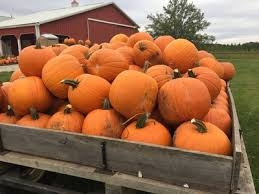 Best Pumpkin Patches Near Milwaukee by 2017 Halloween Events Around Milwaukee And Southeast Wisconsin