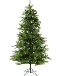 Fraser Christmas Tree Care by Here U0027s A Great Price On Fraser Hill Farm 7 5 Foot Noble Fir Pre