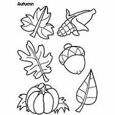 Autumn Seasonal Fruits Coloring Sheet