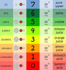100 Ph Of 1 What Is PH The Mathematics Of Hydrogen The Project Shop