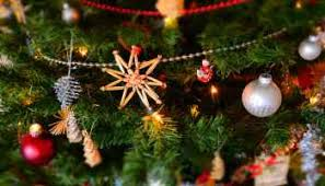 Shells Christmas Tree Farm Tuscumbia Al by Free Buddy The Elf Pop Up Events