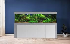 aquarium kombination admiral 250x70x70 147 cm rechteckform glasstärke 15 mm friedeberg aquarienbau