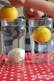 Materials Sink Or Float by Playful Science Sink Or Float Experiment With Lemons