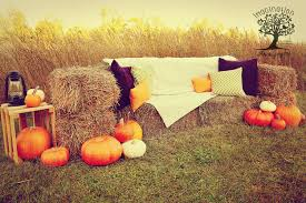 Johnson Brothers Pumpkin Patch Christmas Trees by 2014 Fall Mini Session Set Hay Bale Couch Field Pumpkins