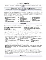 Business Analyst Resume Sample Businessanalyst