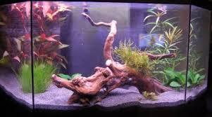 ph aquarium eau douce conversion ppm pour la lecture des paramètres d eau