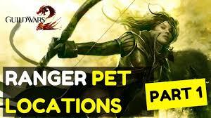 ranger part 1 guild wars 2 ranger pet locations part 1 gw2 base pets