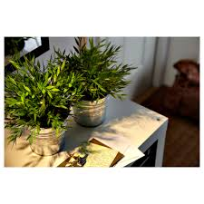 Fake Plants For The Bathroom by Fejka Artificial Potted Plant Ikea