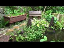 How to build an aquaponic pond system at home YouTube
