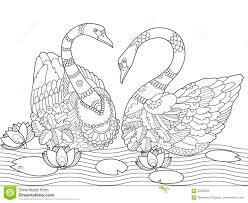 Coloriages Coloriage Dun Couple De Cygnes Frhellokidscom