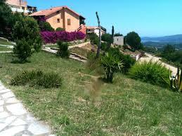 100 Sardinia House Costa Smeralda Townhouses For Rent In Olbia