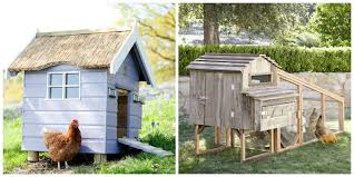 The City Of Austin Is Now Paying People To Keep Backyard Chicken Coops Chickens Make Me Happy 28 Best Broken Arrow Backyard Images On Pinterest Austin The Pros And Cons Of Popsugar Home Coop De Ville In Tx Page 4 Backyard The Doodle House Instagram Photos Videos Tagged With Atxlocal Snap361 Texas Flock Sell Out Cdc Links To Nationwide Salmonella Outbreaks In Your Program Hatches Oct 13 Backyards Modern Landscape Design Ideas Stone Fire Pits Water