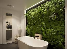 Plants For Bathrooms With No Light by Bathroom Bathroom Plants For Design Amazing Uk Plant Stand