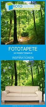inspiration wandgestaltung mit einer wald fototapete für ihr