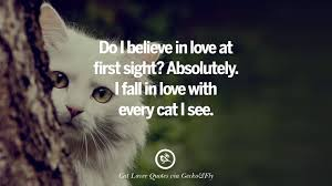 cat quotes 25 cat images with quotes for cat gentlemen and