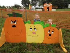 Columbus Ohio Pumpkin Patches by Free Supply Giveaways Across Northeast Ohio Free
