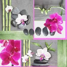 nappe toile ciree au metre toile cirée largeur 140 cm au mètre orchidée achat vente