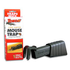 tom cat mouse trap live catch mouse traps the guide to catching mice live