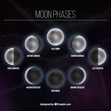 Moon phases background Vector