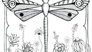Dragonfly Coloring Pages Free Children