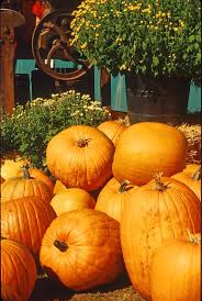 Pumpkin House Kenova Wv 2014 Schedule by 117 Best Country Roads Take Me Home To The Place I Belong Images